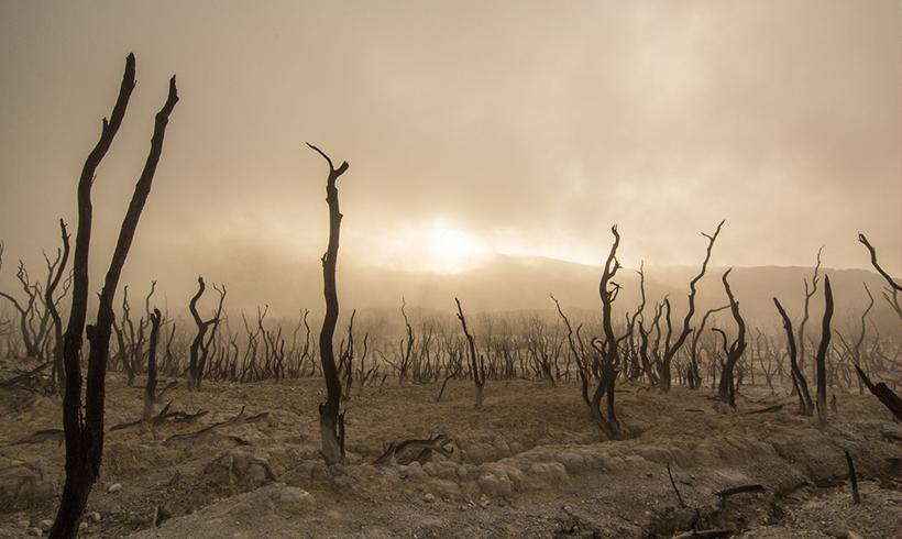 Erde wird sich um drei Grad erwärmen