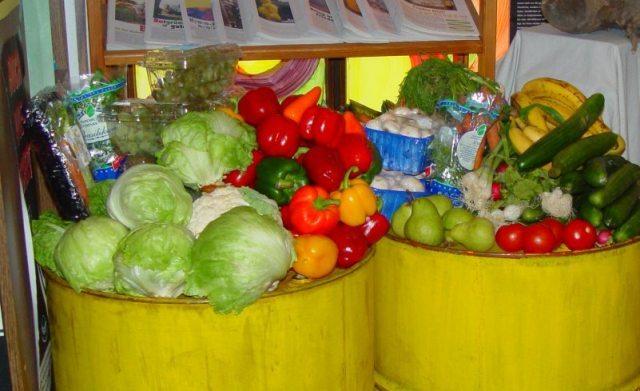#Kaltland: Hungern erlaubt, Hunger stillen verboten – ein Kommentar von Olga Wolf