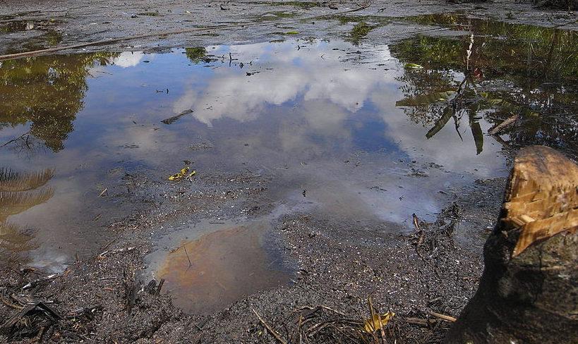 Ölteppich vor Küste Borneos bedroht Menschenleben