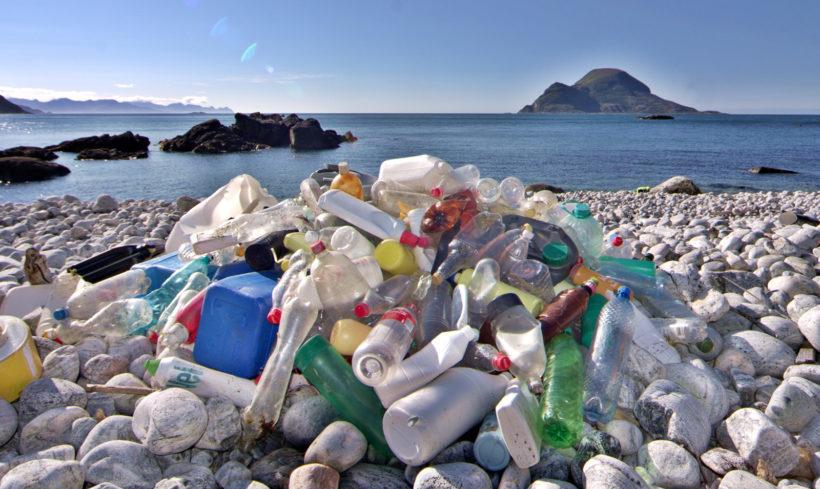 Der Kampf gegen den Müll?