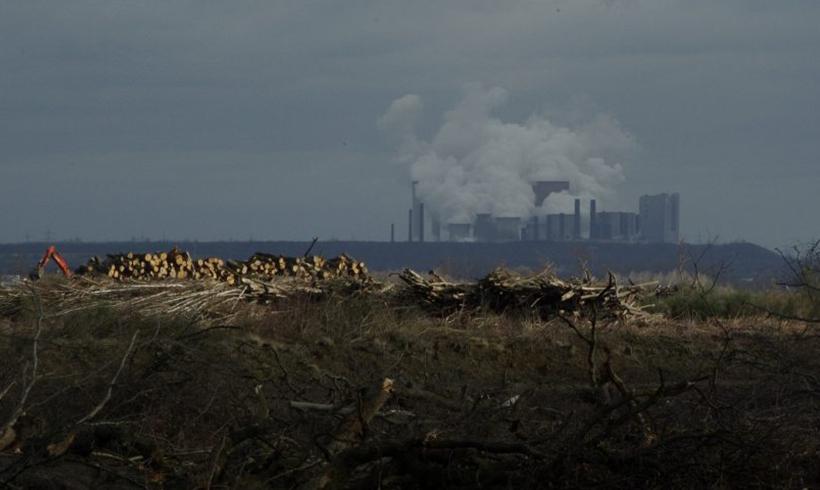 Hambacher Forst: Wiesen-Besitzer fordert 80 Milliarden von RWE