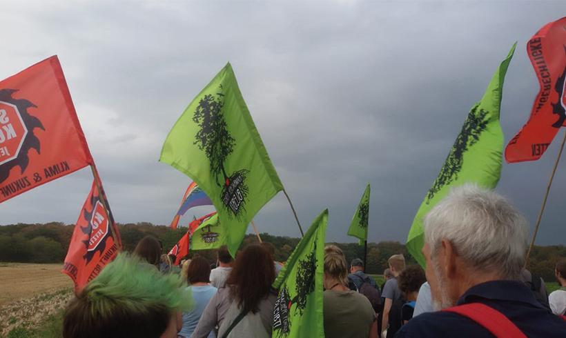 Der Kampf um den Hambacher Forst ist global
