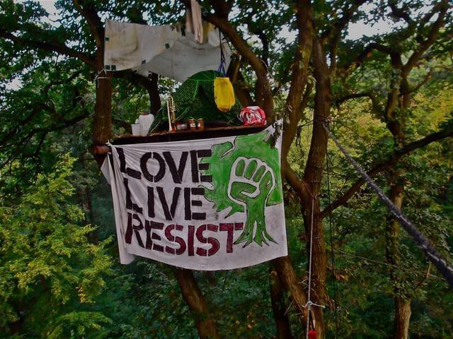 Räumung des Hambacher Forsts: Perspektive berichtet vor Ort